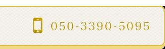 050-3390-5095